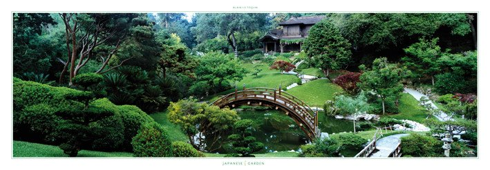Impressive  Review of Yume Japanese Gardens Tucson AZ