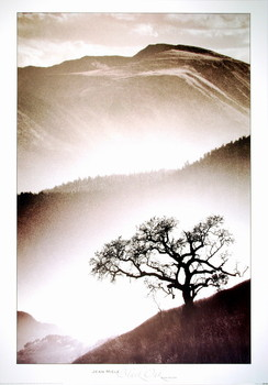 Black Oak posters | photos | pictures | images