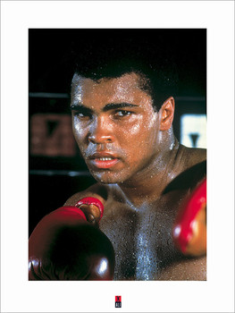 Muhammad Ali  posters | photos | pictures | images