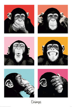 THE CHIMP - pop posters | art prints