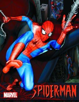 Metalowa tabliczka SPIDER-MAN