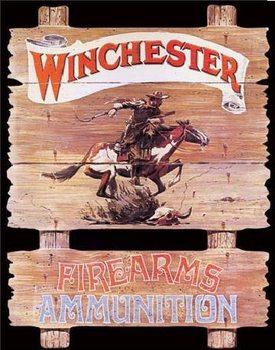 Metalowa tabliczka WIN - express rider