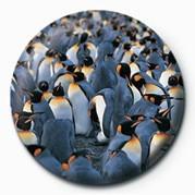 Odznaka PENGUINS