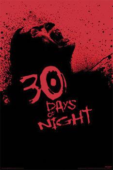 Plakat 30 DNI MROKU - screaming zombie