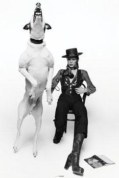 Plakat David Bowie - Diamond Dogs