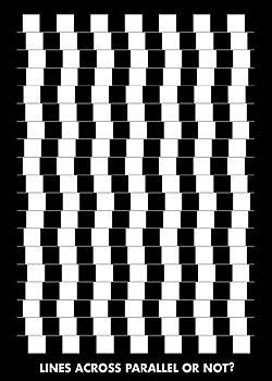 Plakat Lines across parallel or nor?