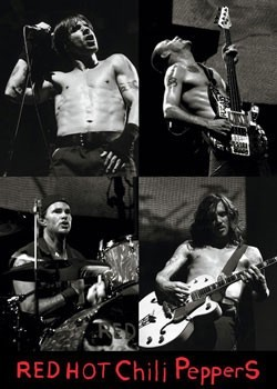 Plakat Red hot chili peppers Live