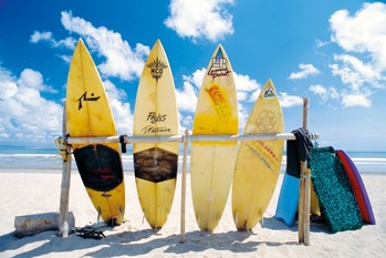 Plakat Sun sea & surf