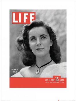Reprodukcja Time Life - Life Cover - Elizabeth Taylor