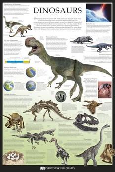 Dinosaurs pósters | láminas | fotos