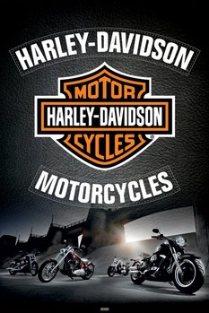 HARLEY DAVIDSON - cuero / leather /  psters | lminas | fotos