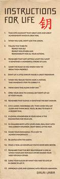 Dalai Lama - návody pro život Poster, Art Print