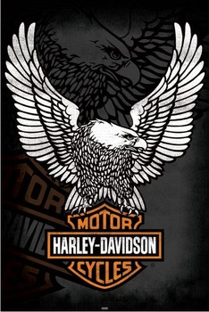 HARLEY DAVIDSON - eagle posters | art prints