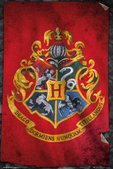 Harry Potter - Hogwarts Flag Poster, Art Print