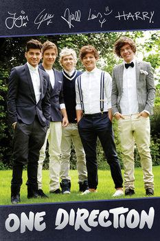 One Direction - Standing Signatures Poster, Art Print
