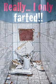 ONLY FARTED posters | art prints