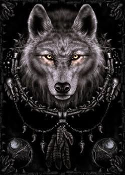 Spiral - wolf dreams Poster, Art Print