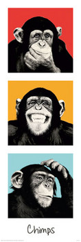 THE CHIMP - pop posters | photos | pictures | images