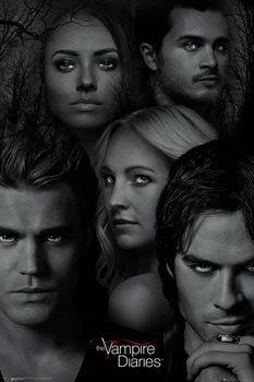 The Vampire Diaries - Faces Poster, Art Print