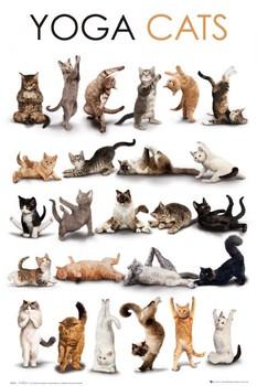 Yoga cats Poster, Art Print