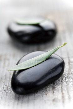 Obraz Zen - on Wood