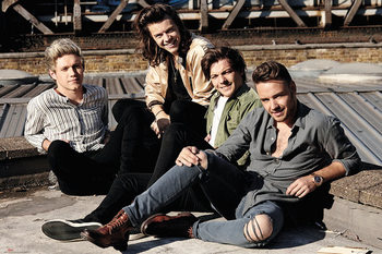 One Direction - Rooftop Poster, Art Print