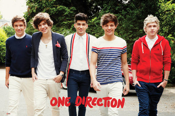 ONE DIRECTION - walking posters | art prints