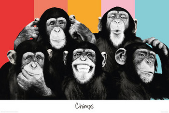 THE CHIMP - Compilation posters | art prints