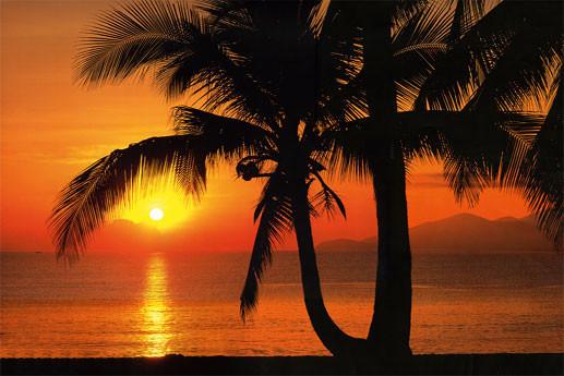 PALMY BEACH SUNRISE Fototapeta