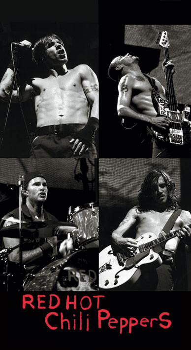 Naklejka RED HOT CHILI PEPPERS - live