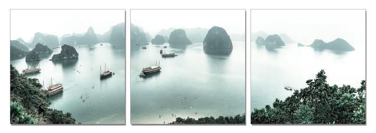 Expreiences from Vietnam Obraz