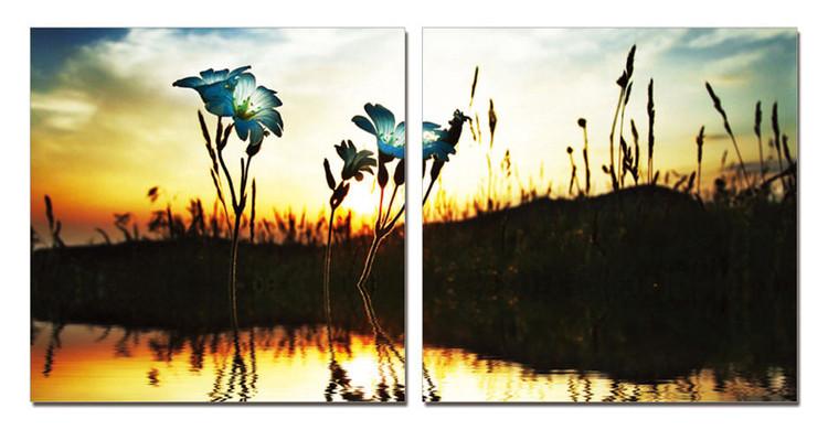 Little Piece of Beauty - Flower Obraz