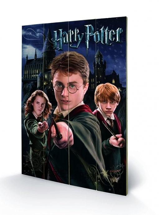 Obraz na drewnie Harry Potter – Harry, Ron, Hermione