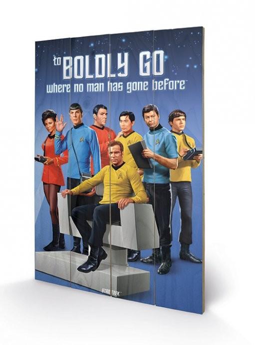 Obraz na drewnie Star Trek - Boldly Go