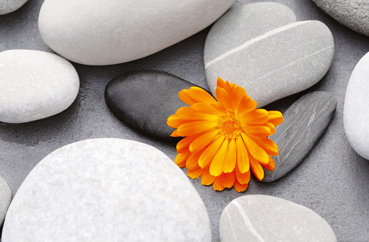Plakat ACHIM SASS -  heart among stones