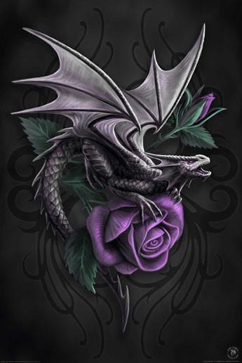 Plakat Anne Stokes - dragon beauty