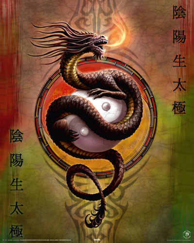 Plakat ANNE STOKES - yin yang protect