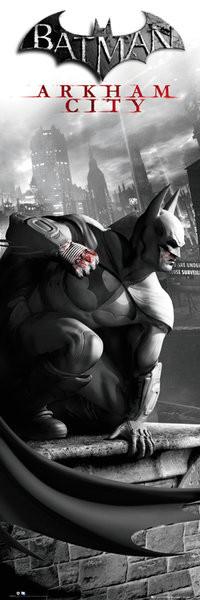Plakat BATMAN ARKHAM CITY - cover