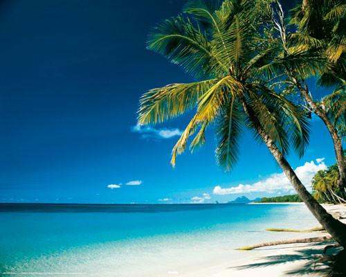 Plakat Beach - morning