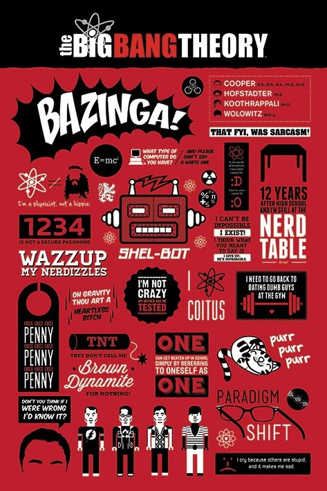 Plakat BIG BANG THEORY - infographic