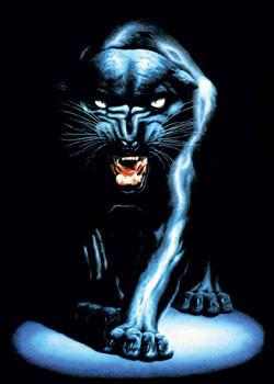 Plakat Black panther