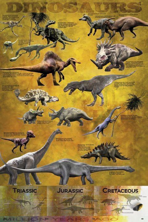 Plakat Dinosaurus - chart