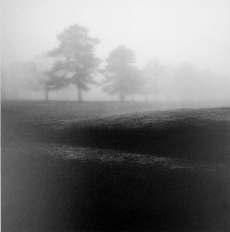 Reprodukcja Fog Tree Study II