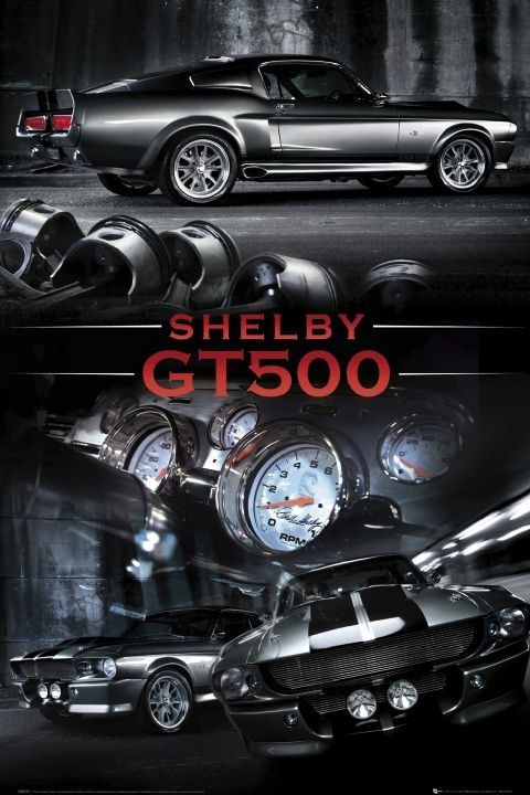 Plakat Ford Shelby - Mustang gt 500