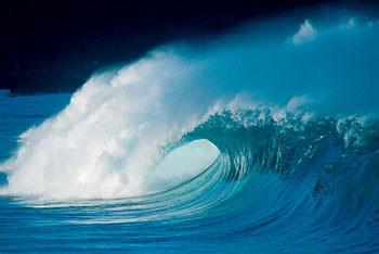 Plakat Midnight wave