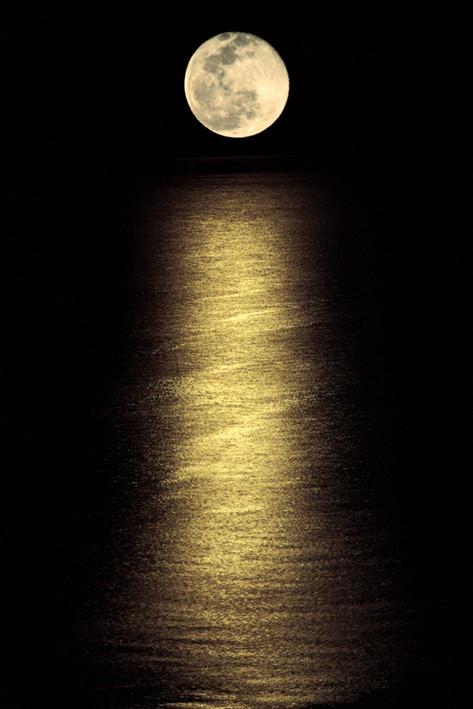 Plakat Moonlight ocean