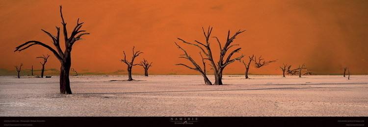 Reprodukcja Namibie