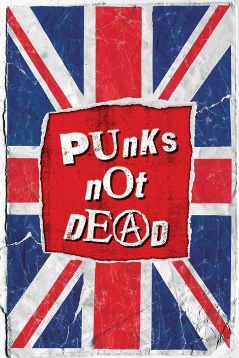 Plakat Punk not death