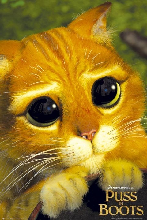 Plakat PUSS IN BOOTS - cats eye