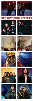Plakat Red hot chili peppers - snapshots